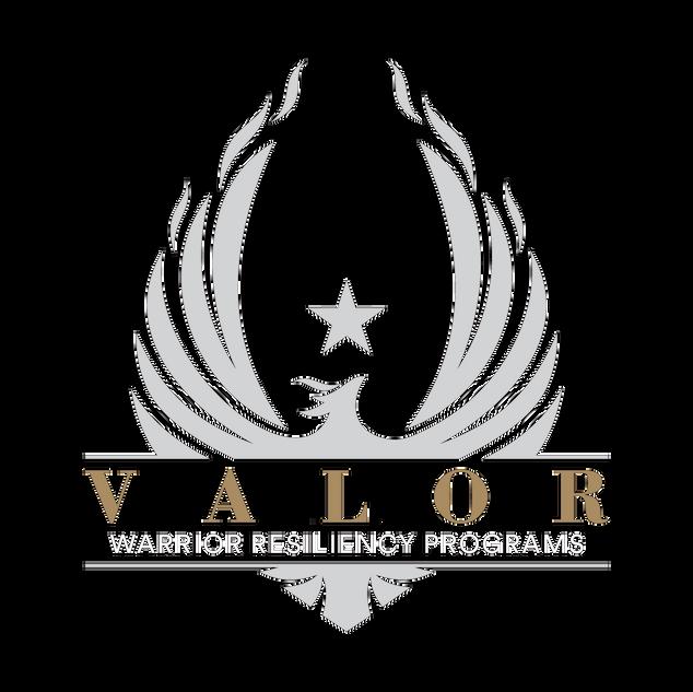 Valor-Logo---01-(background-black)_edite