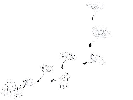 dandelion seeds.png