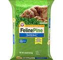 FelinePine.jpg