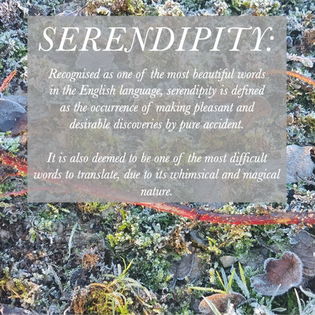 Serendipity: hard work, (seemingly) random decisions and the faith of others. Part 2