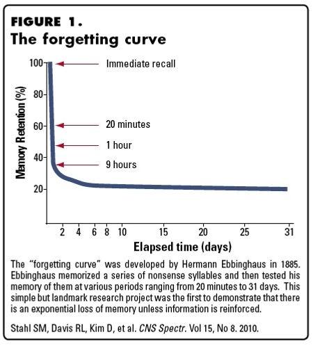 Forgetting curve.jpg