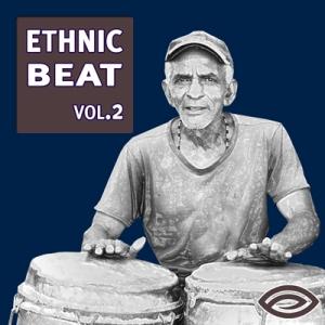 STYE172 - Ethnic Beat Vol. 2_cover
