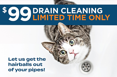 Drain Cleaning Cat ad