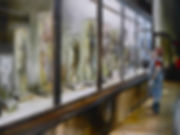 Naturhistorisches Museum Wien, 60x80,17_
