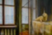 Seehund 120_80 2016.jpg