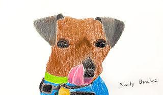 Kaily-Dog.jpg