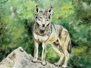 Anna-Wolf.jpg