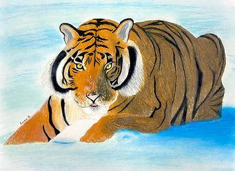 Emma-B-Tiger.jpg