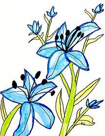 Eli-Flowers.jpg