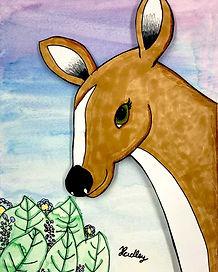 Hadley-Deer.jpg