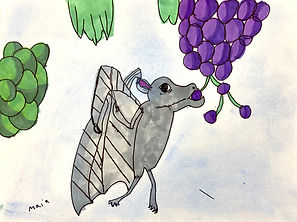 Maia-Bat.jpg