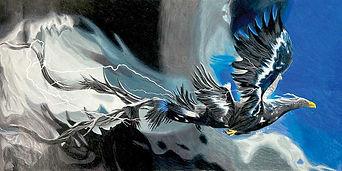 Koko-Thunderbird.jpg