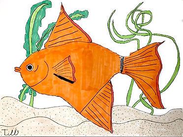 trop-fish-1.jpg
