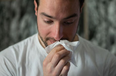 New Blocked Nose Guide now available