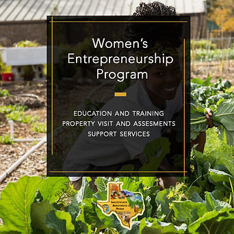 2021 04 Women's Entrepreneurship AD desi