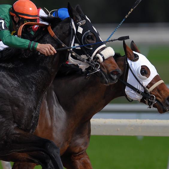 Fairmount Park Horse Races   $55