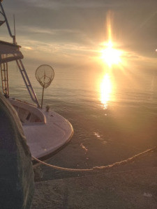 sheepshead fishing oregon inlet