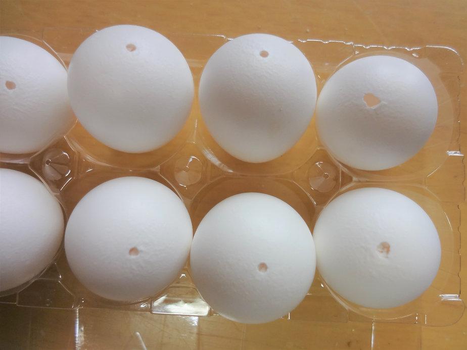 コリンズ卵殻その2.jpg