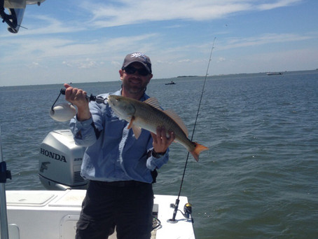 Speckled trout and reds!!