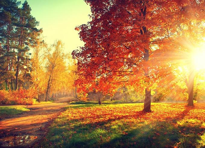 autumn life hygge poem