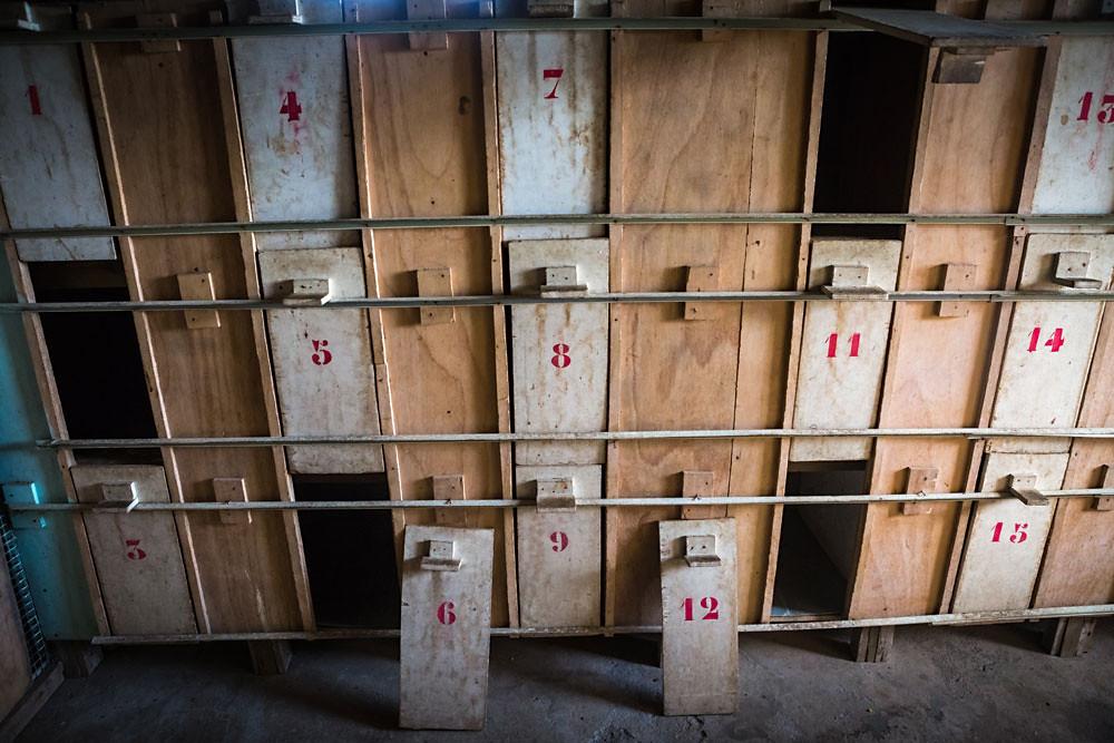 Boxes à coqs