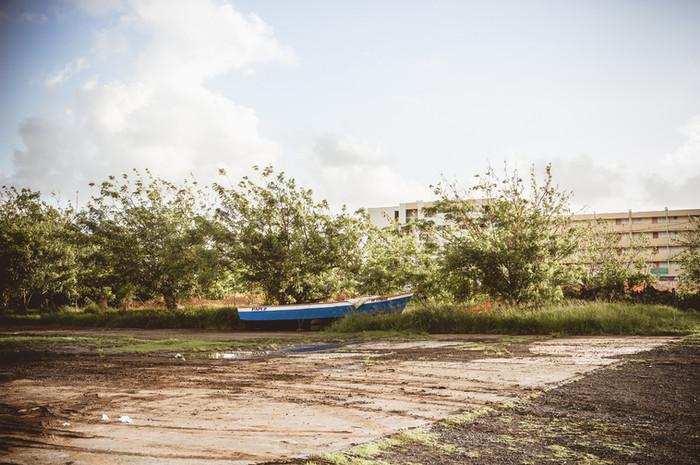 Martinique-9635_2.jpg