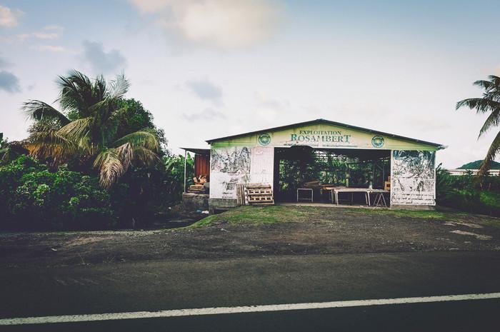 Martinique-0234.jpg