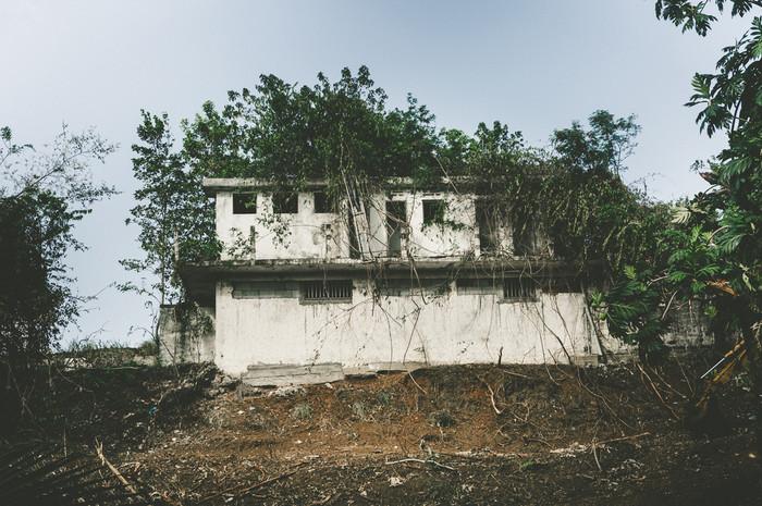 Martinique-0229.jpg