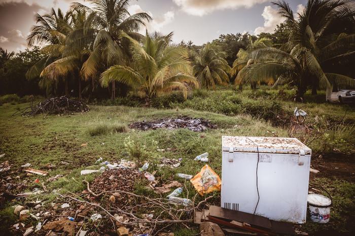 Martinique-9625_2.jpg