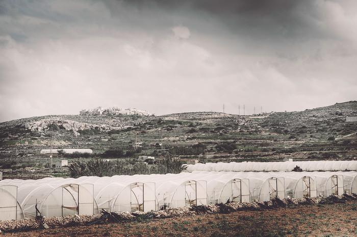 Malte-1127.jpg