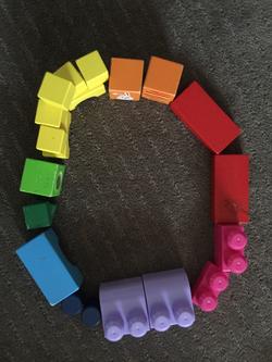 Anusheh colour wheel 2