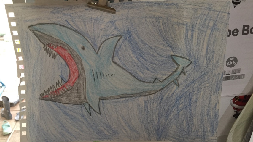 Gypsy Shark from Art for Kids Hub
