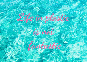 Life in Plastic is Not Fantastic