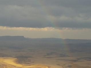 סימנים במדבר