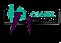 Camel Marketing small logo