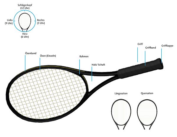 anatomie-eines-tennisschlaegers.png