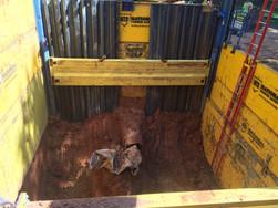 Specialty Excavations2.jpg