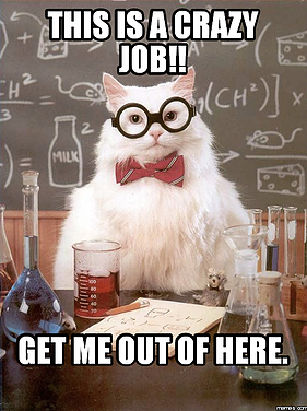 Your Strangest Voiceover Job!