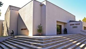 Reflexiones en torno al coronavirus por Haydée Milos, directora de Museo Ralli Santiago
