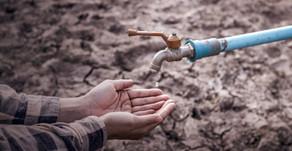 Finalistas de SOFTYS WATER CHALLENGE