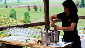 Reseña de vinos: In Situ