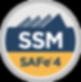 badge_SM.png