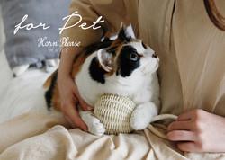 hp-top-pet
