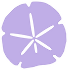 Purple shell with border.png