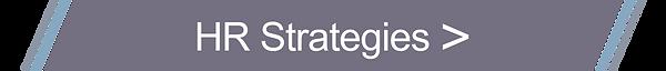 VLL_HR_Strategies_BUTTON.png
