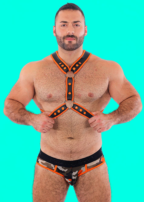GRIZZLY NEO HARNESS