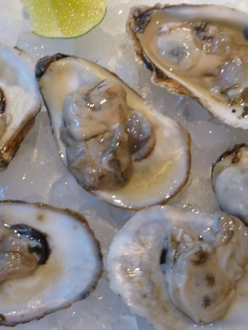 oysters blue poin.JPG