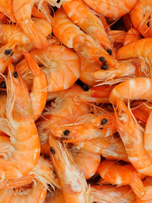 fresh_shrimp.jpg