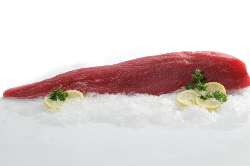 fresh tuna lion #1.jpg