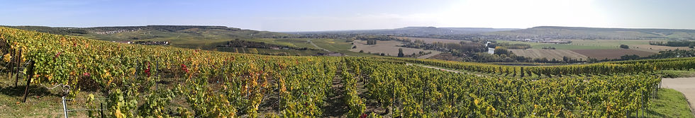 Taxi Epernay, Champagne tour, private driver, Champagne chauffeur